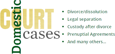 Domestic court cases